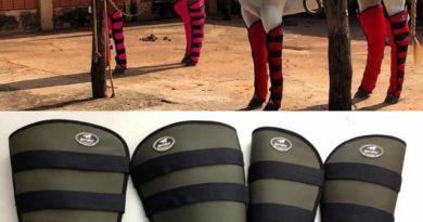 Utilize acessórios para proteção, que irá garantir a segurança no transporte do seu cavalo.